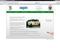 Screenshot Webseite Baschco GmbH